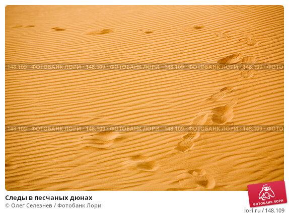 Следы в песчаных дюнах, фото № 148109, снято 19 августа 2007 г. (c) Олег Селезнев / Фотобанк Лори