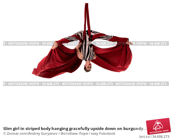 Slim girl in striped body hanging gracefully upside down on burgundy... Стоковое фото, фотограф Zoonar.com/Andrey Guryanov / easy Fotostock / Фотобанк Лори