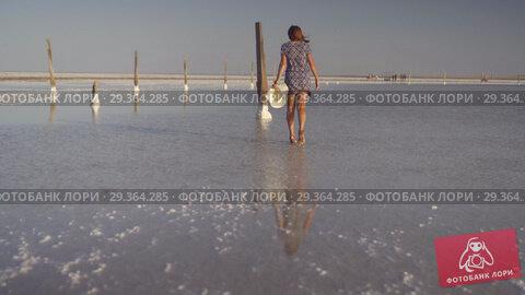 Купить «Slim sexy girl enjoying a sunset, gently walks on the water of a salt lake», видеоролик № 29364285, снято 28 октября 2018 г. (c) Ирина Мойсеева / Фотобанк Лори