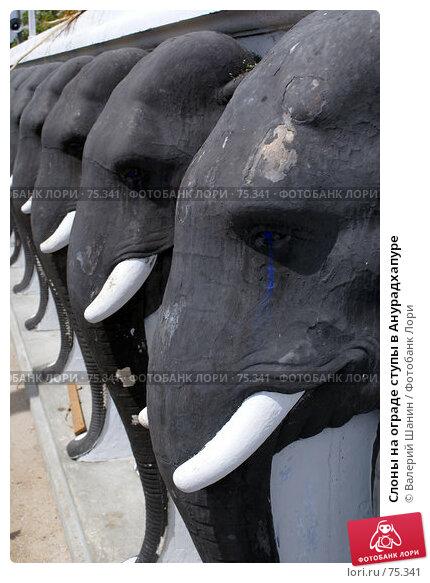 Слоны на ограде ступы в Анурадхапуре, фото № 75341, снято 27 мая 2007 г. (c) Валерий Шанин / Фотобанк Лори