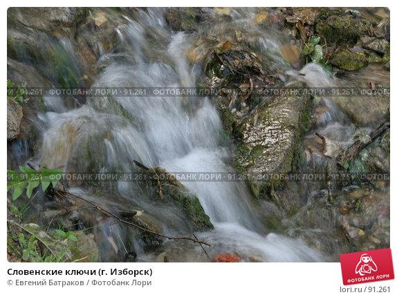 Словенские ключи (г. Изборск), фото № 91261, снято 18 августа 2007 г. (c) Евгений Батраков / Фотобанк Лори