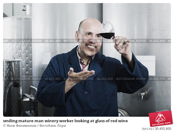 smiling mature man winery worker looking at glass of red wine. Стоковое фото, фотограф Яков Филимонов / Фотобанк Лори