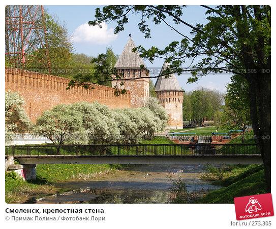 Купить «Смоленск, крепостная стена», фото № 273305, снято 5 мая 2008 г. (c) Примак Полина / Фотобанк Лори