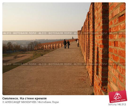 Смоленск. На стене кремля, фото № 46513, снято 28 апреля 2006 г. (c) АЛЕКСАНДР МИХЕИЧЕВ / Фотобанк Лори