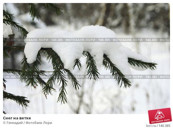 Снег на ветке, фото № 140385, снято 2 декабря 2007 г. (c) Геннадий / Фотобанк Лори