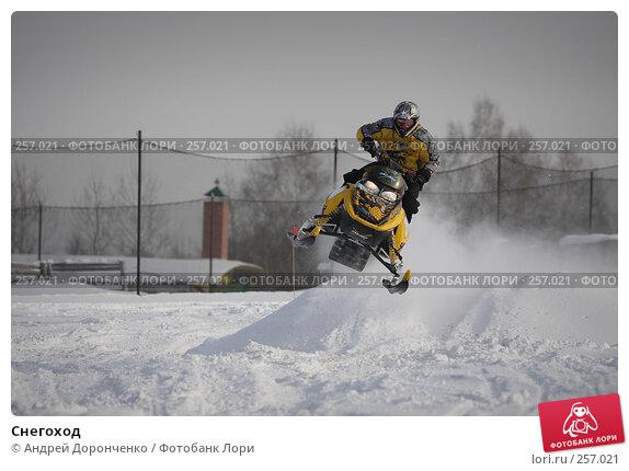 Купить «Снегоход», фото № 257021, снято 20 марта 2018 г. (c) Андрей Доронченко / Фотобанк Лори
