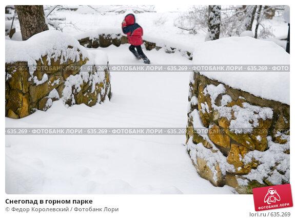 Купить «Снегопад в горном парке», фото № 635269, снято 27 декабря 2008 г. (c) Федор Королевский / Фотобанк Лори
