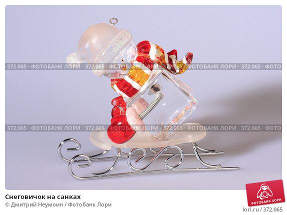Купить «Снеговичок на санках», эксклюзивное фото № 372065, снято 3 июля 2008 г. (c) Дмитрий Неумоин / Фотобанк Лори