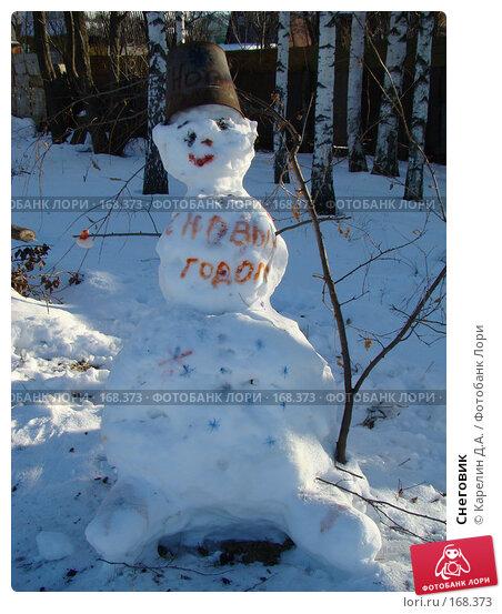 Снеговик, фото № 168373, снято 5 января 2008 г. (c) Карелин Д.А. / Фотобанк Лори