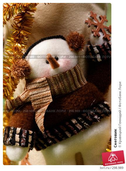 Снеговик, фото № 298989, снято 13 ноября 2004 г. (c) Кравецкий Геннадий / Фотобанк Лори