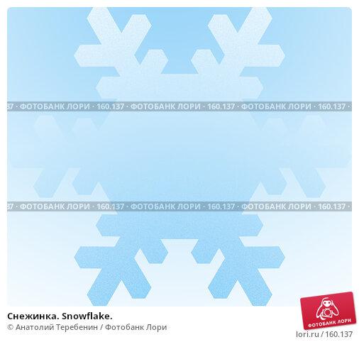 Снежинка. Snowflake., иллюстрация № 160137 (c) Анатолий Теребенин / Фотобанк Лори