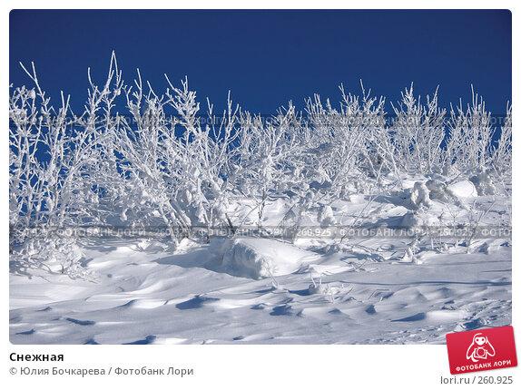 Снежная, фото № 260925, снято 3 февраля 2007 г. (c) Юлия Бочкарева / Фотобанк Лори
