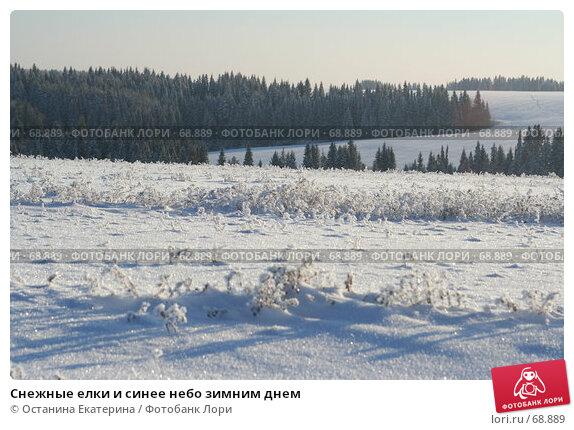 Снежные елки и синее небо зимним днем, фото № 68889, снято 29 ноября 2006 г. (c) Останина Екатерина / Фотобанк Лори