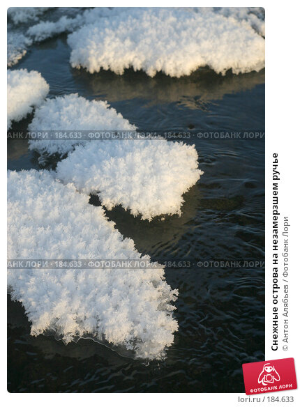 Снежные острова на незамерзшем ручье, фото № 184633, снято 8 января 2008 г. (c) Антон Алябьев / Фотобанк Лори