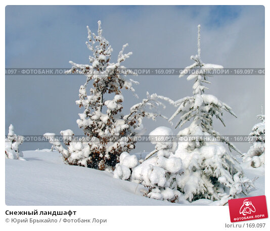 Снежный ландшафт, фото № 169097, снято 3 января 2005 г. (c) Юрий Брыкайло / Фотобанк Лори
