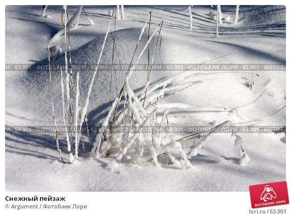 Снежный пейзаж, фото № 63901, снято 19 марта 2006 г. (c) Argument / Фотобанк Лори