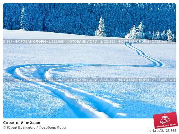 Купить «Снежный пейзаж», фото № 2123865, снято 8 марта 2010 г. (c) Юрий Брыкайло / Фотобанк Лори
