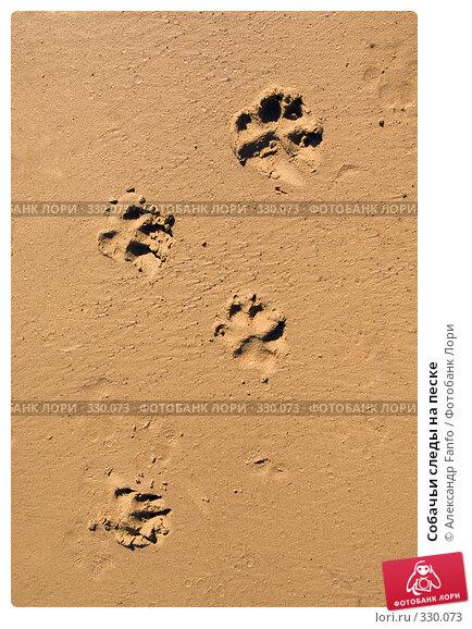 Собачьи следы на песке, фото № 330073, снято 29 мая 2017 г. (c) Александр Fanfo / Фотобанк Лори