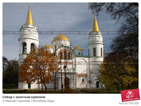 Собор с золотым куполом, фото № 137337, снято 27 октября 2006 г. (c) Максим Горпенюк / Фотобанк Лори