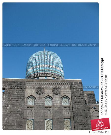 Соборная мечеть.Санкт-Петербург., фото № 324501, снято 12 июня 2008 г. (c) Заноза-Ру / Фотобанк Лори