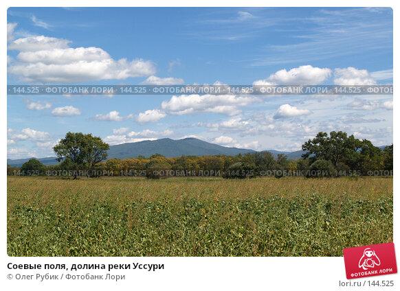 Соевые поля, долина реки Уссури, фото № 144525, снято 4 сентября 2007 г. (c) Олег Рубик / Фотобанк Лори