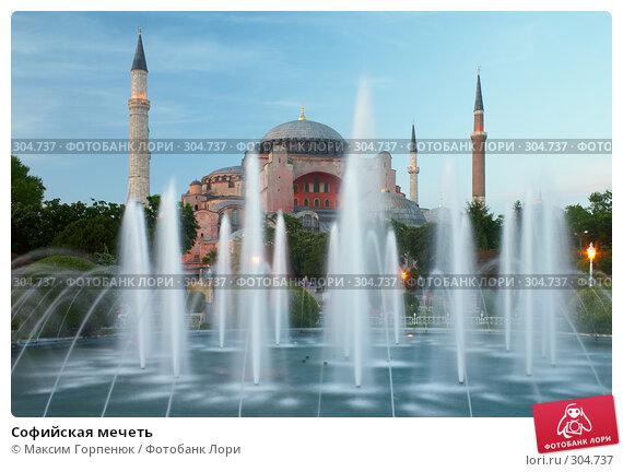 Купить «Софийская мечеть», фото № 304737, снято 24 мая 2006 г. (c) Максим Горпенюк / Фотобанк Лори