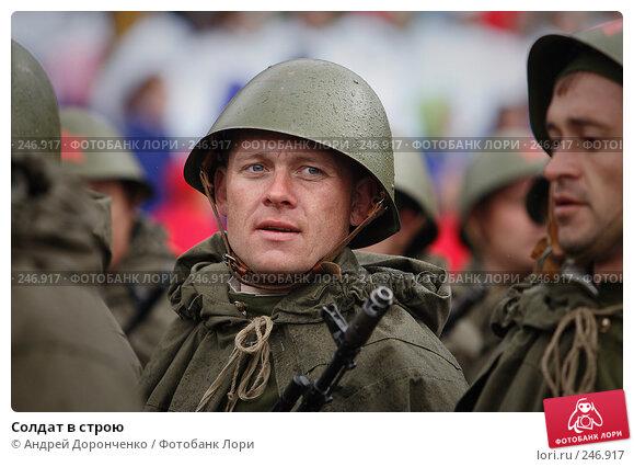 Солдат в строю, фото № 246917, снято 25 марта 2017 г. (c) Андрей Доронченко / Фотобанк Лори