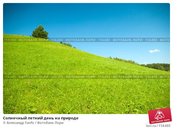 Купить «Солнечный летний день на природе», фото № 114693, снято 9 августа 2007 г. (c) Александр Fanfo / Фотобанк Лори