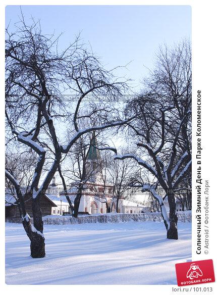Солнечный Зимний День в Парке Коломенское, фото № 101013, снято 11 февраля 2007 г. (c) Astroid / Фотобанк Лори