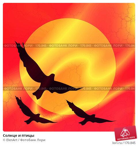 Солнце и птицы, иллюстрация № 170845 (c) ElenArt / Фотобанк Лори