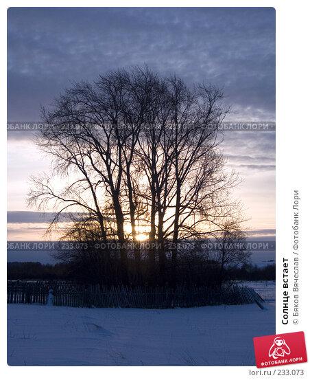 Солнце встает, фото № 233073, снято 3 января 2008 г. (c) Бяков Вячеслав / Фотобанк Лори