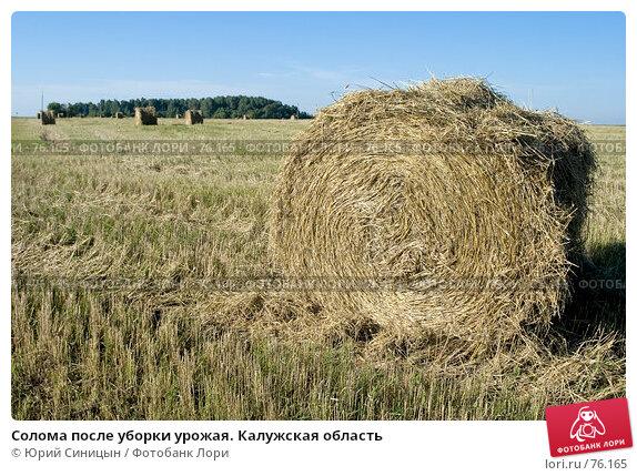 Солома после уборки урожая. Калужская область, фото № 76165, снято 11 августа 2007 г. (c) Юрий Синицын / Фотобанк Лори