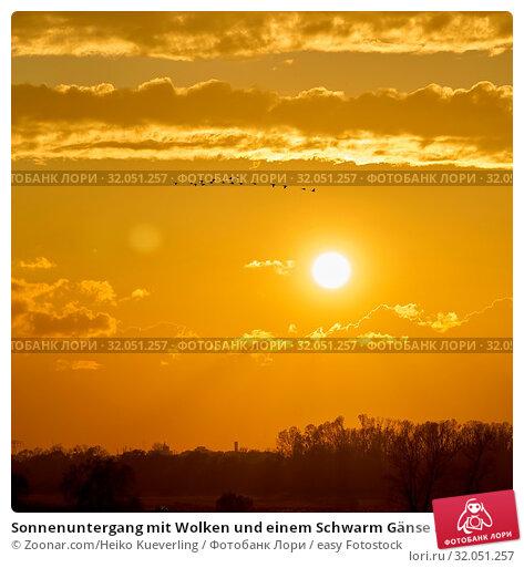 Sonnenuntergang mit Wolken und einem Schwarm Gänse am Waldrand. Стоковое фото, фотограф Zoonar.com/Heiko Kueverling / easy Fotostock / Фотобанк Лори
