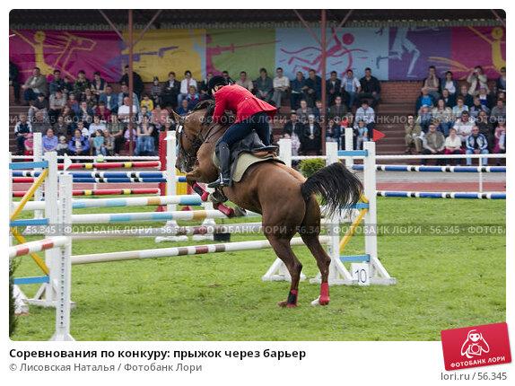 Соревнования по конкуру: прыжок через барьер, фото № 56345, снято 14 мая 2006 г. (c) Лисовская Наталья / Фотобанк Лори