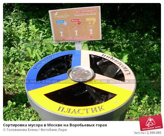 Сортировка мусора в Москве на Воробьевых горах. Стоковое фото, фотограф Голованова Елена / Фотобанк Лори