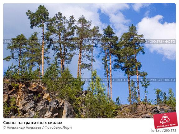Сосны на гранитных скалах, эксклюзивное фото № 290573, снято 3 августа 2006 г. (c) Александр Алексеев / Фотобанк Лори