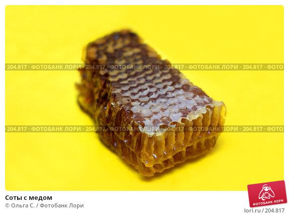 Купить «Соты с медом», фото № 204817, снято 12 декабря 2017 г. (c) Ольга С. / Фотобанк Лори