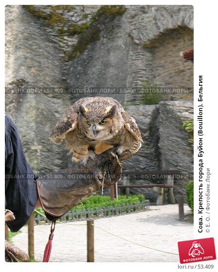 Сова. Крепость города Буйон (Bouillon). Бельгия, фото № 53409, снято 7 июня 2007 г. (c) Екатерина Овсянникова / Фотобанк Лори