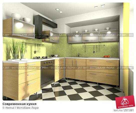 Современная кухня, иллюстрация № 257081 (c) Hemul / Фотобанк Лори