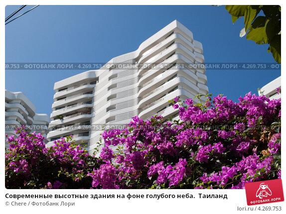 Купить «Современные высотные здания на фоне голубого неба.  Таиланд», фото № 4269753, снято 14 января 2013 г. (c) Chere / Фотобанк Лори