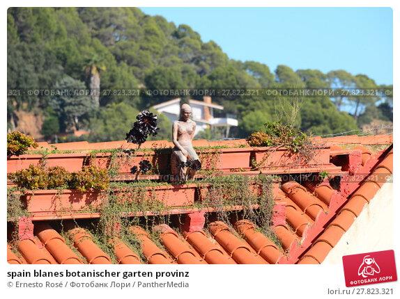 Купить «spain blanes botanischer garten provinz», фото № 27823321, снято 15 октября 2018 г. (c) PantherMedia / Фотобанк Лори