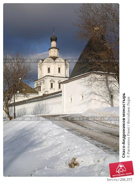 Спасо-Андроников монастырь, фото № 206377, снято 20 февраля 2008 г. (c) Parmenov Pavel / Фотобанк Лори