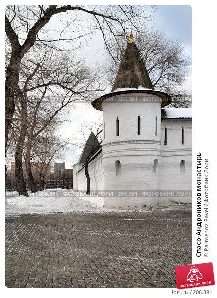 Купить «Спасо-Андроников монастырь», фото № 206381, снято 20 февраля 2008 г. (c) Parmenov Pavel / Фотобанк Лори