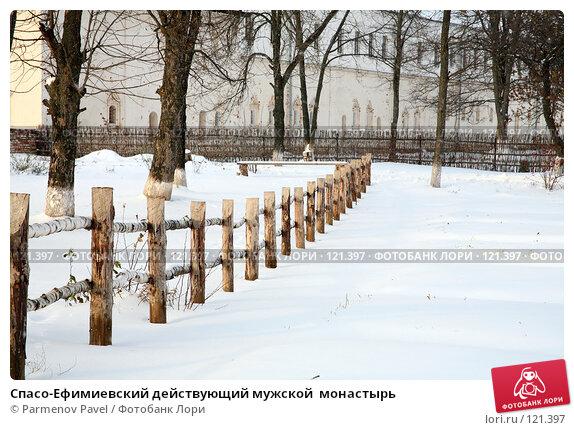 Купить «Спасо-Ефимиевский действующий мужской  монастырь», фото № 121397, снято 18 ноября 2007 г. (c) Parmenov Pavel / Фотобанк Лори