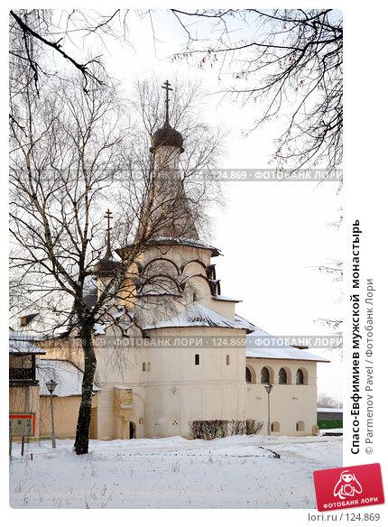 Спасо-Евфимиев мужской  монастырь, фото № 124869, снято 18 ноября 2007 г. (c) Parmenov Pavel / Фотобанк Лори