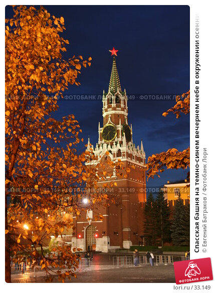 Спасская башня на темно-синем вечернем небе в окружении осенних деревьев с золотыми листьями, Куранты, фото № 33149, снято 8 октября 2006 г. (c) Евгений Батраков / Фотобанк Лори