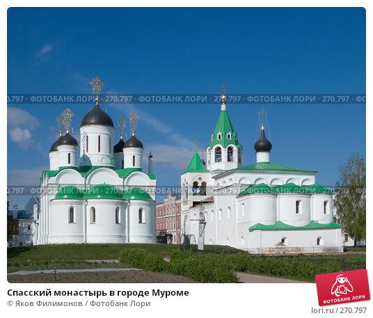 Спасский монастырь в городе Муроме, фото № 270797, снято 2 мая 2008 г. (c) Яков Филимонов / Фотобанк Лори