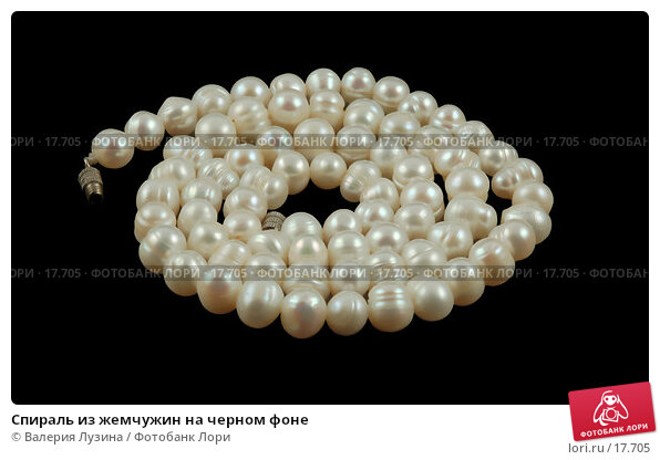 Спираль из жемчужин на черном фоне, фото № 17705, снято 2 февраля 2007 г. (c) Валерия Потапова / Фотобанк Лори