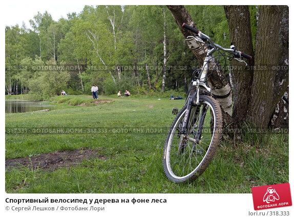 Спортивный велосипед у дерева на фоне леса, фото № 318333, снято 18 мая 2008 г. (c) Сергей Лешков / Фотобанк Лори