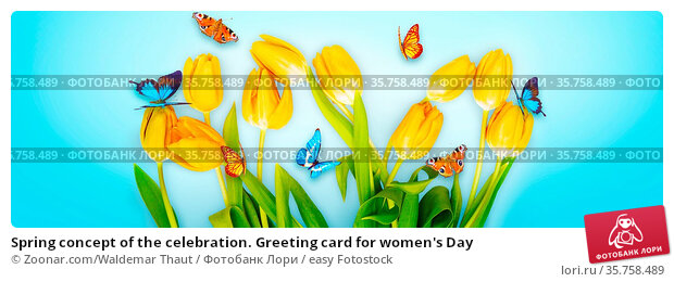 Spring concept of the celebration. Greeting card for women's Day. Стоковое фото, фотограф Zoonar.com/Waldemar Thaut / easy Fotostock / Фотобанк Лори